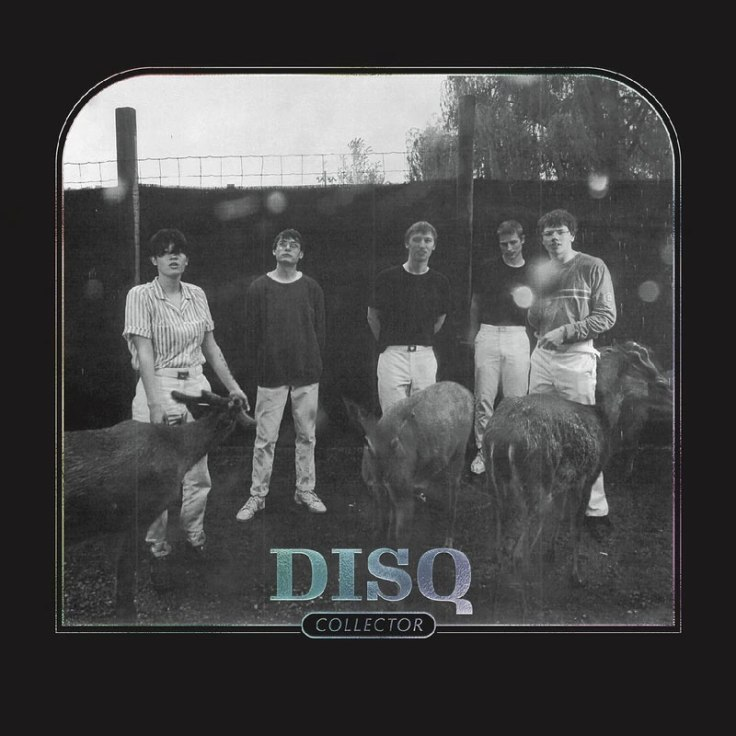 DISQ – Collector (6 mars 2020)